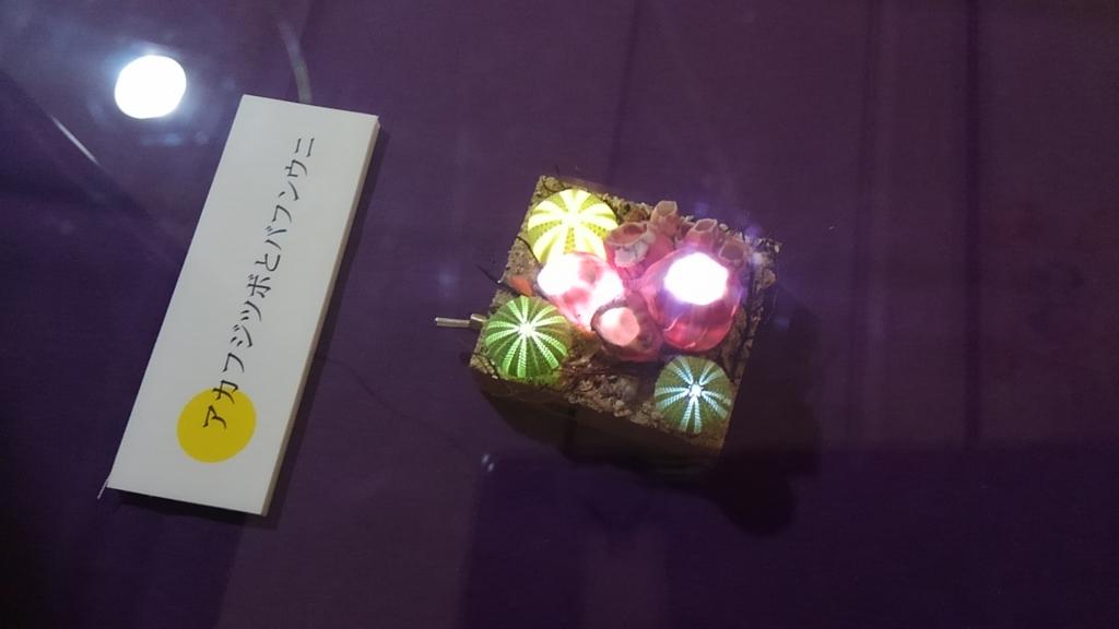 f:id:suzutakahiro1122:20170102223739j:plain