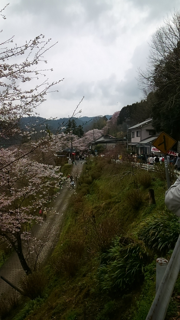 f:id:suzutakahiro1122:20170411204837j:plain