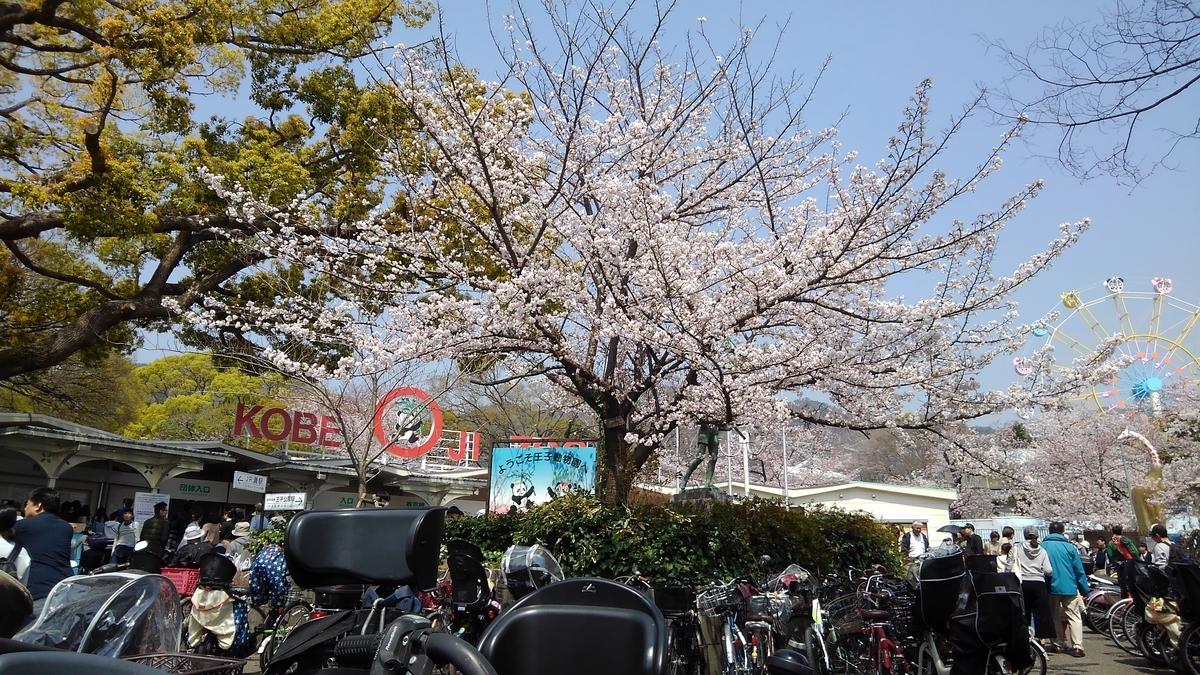 f:id:suzutakahiro1122:20190409153725j:plain