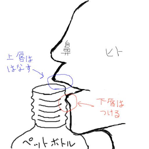f:id:suzutoao:20160708001036j:plain