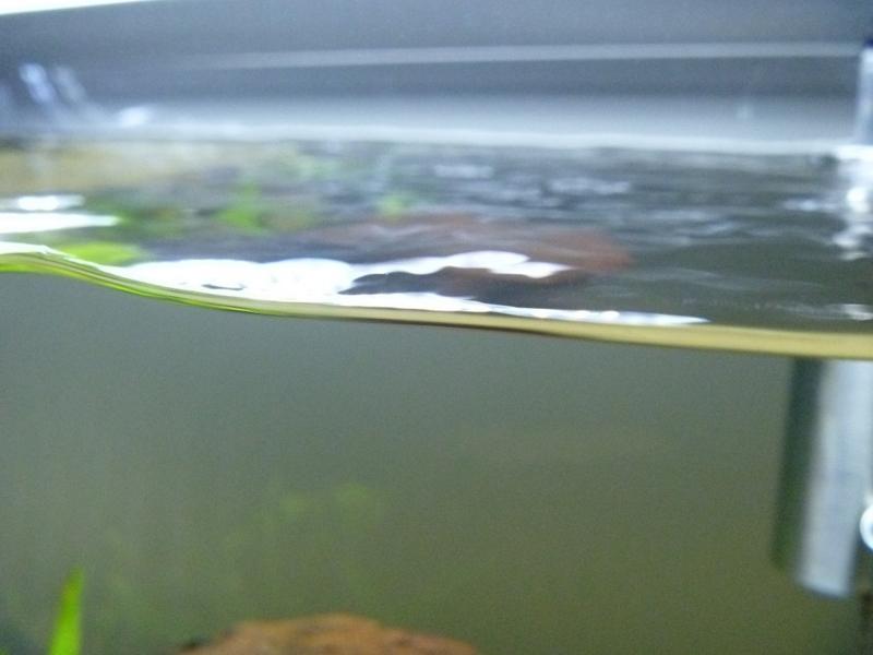 f:id:swallow04:20120708003435j:image:w640