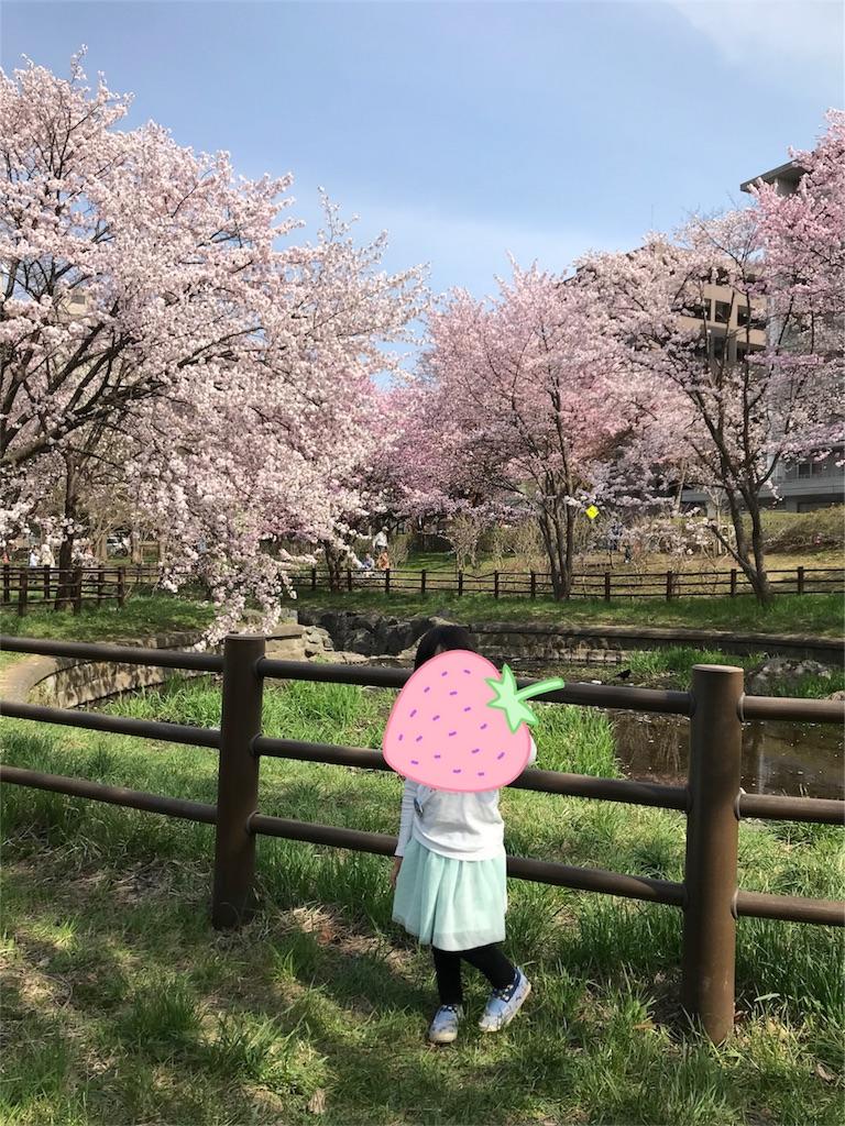 f:id:sweet-yu-sa:20180501182558j:image