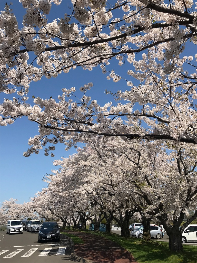 f:id:sweet-yu-sa:20180512223118j:image