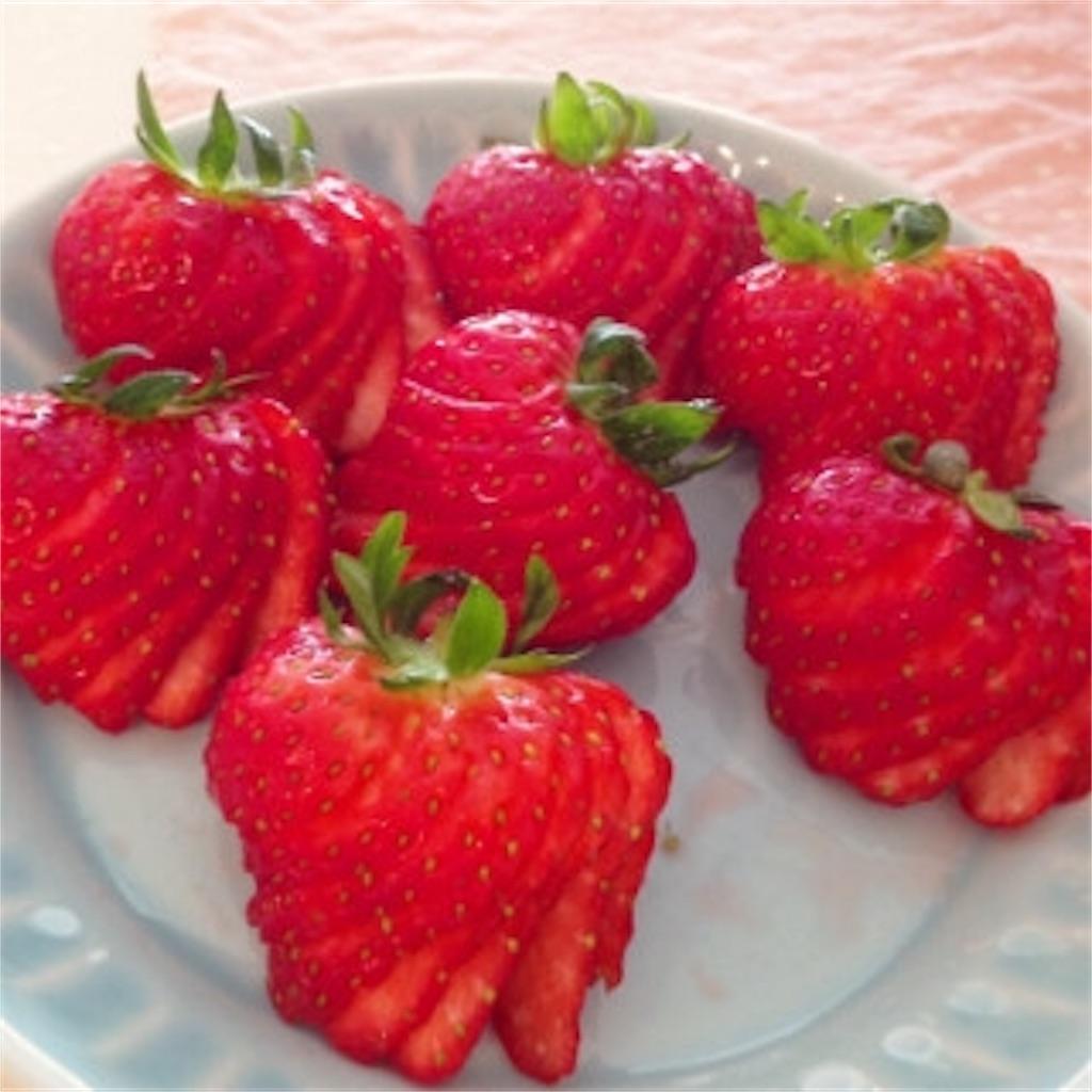 f:id:sweetcakecafe:20180302012119j:image