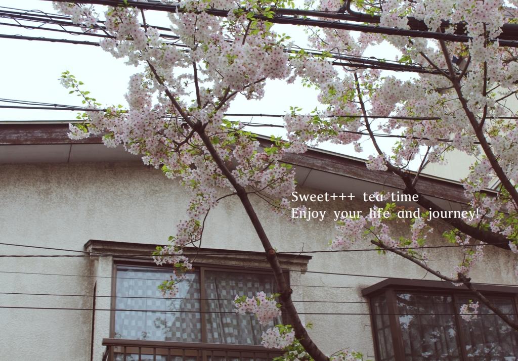 f:id:sweeteatime:20160407184135j:plain