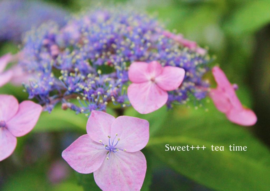 f:id:sweeteatime:20160704073059j:plain