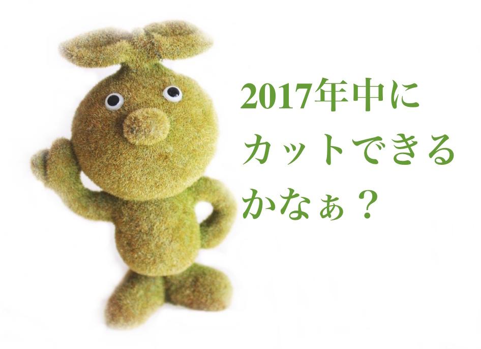 f:id:sweeteatime:20170302185612j:plain