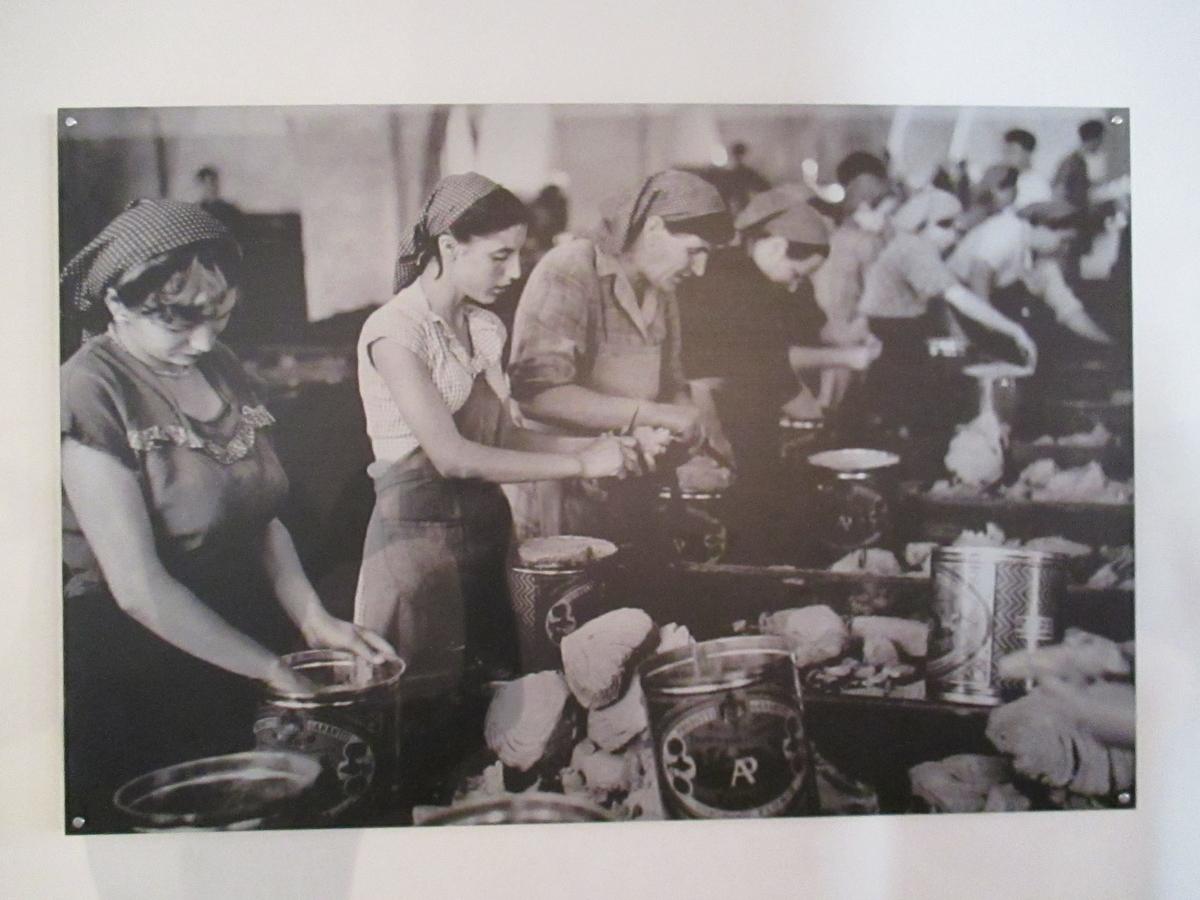昔の写真。マグロ缶詰をつくるイタリア女性