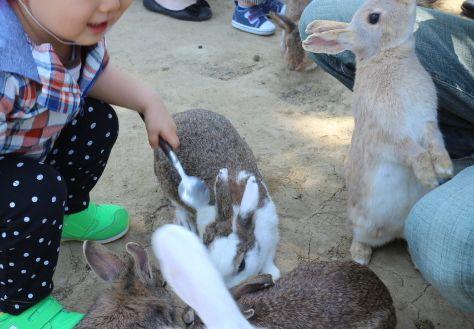 2歳4か月動物園