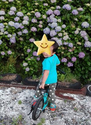3歳 好きなお花はあじさい