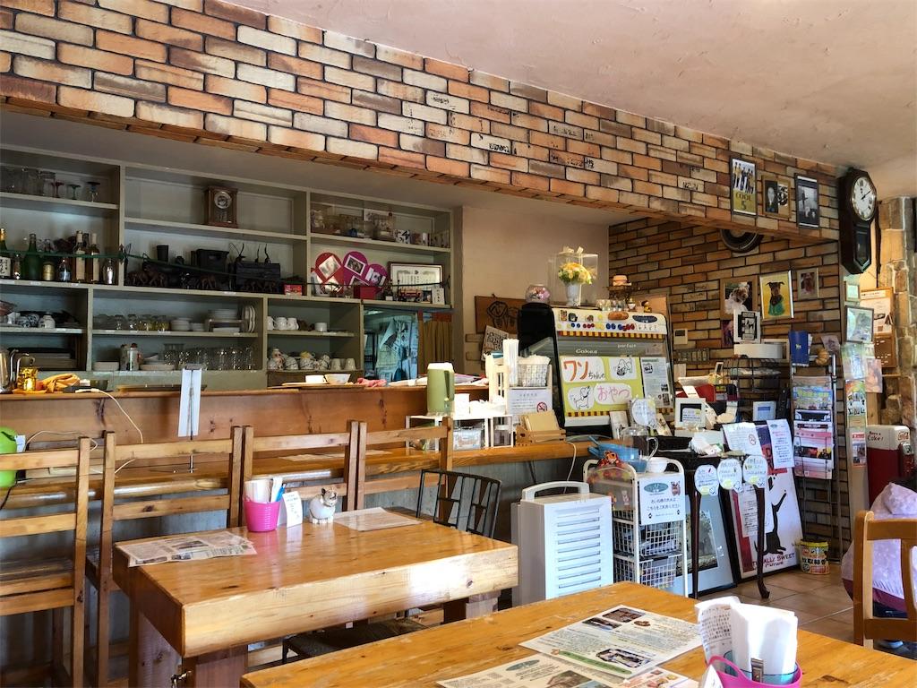 奈良県奈良市・Dog cafe ぶりーだーかふぇ