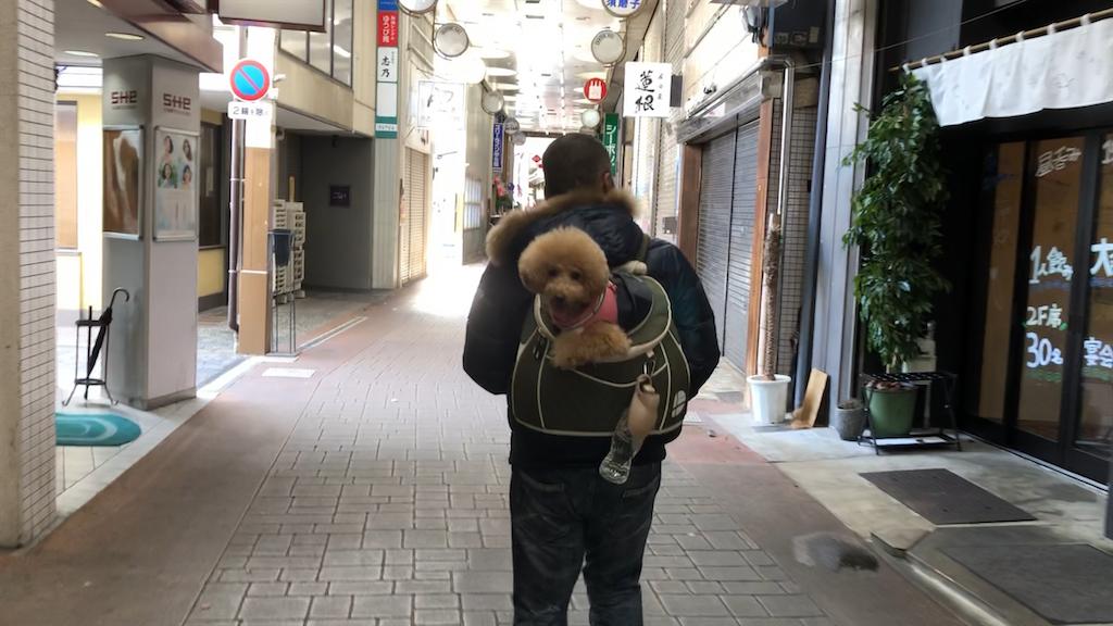 愛犬と倉敷の美観地区散策・食べ歩き