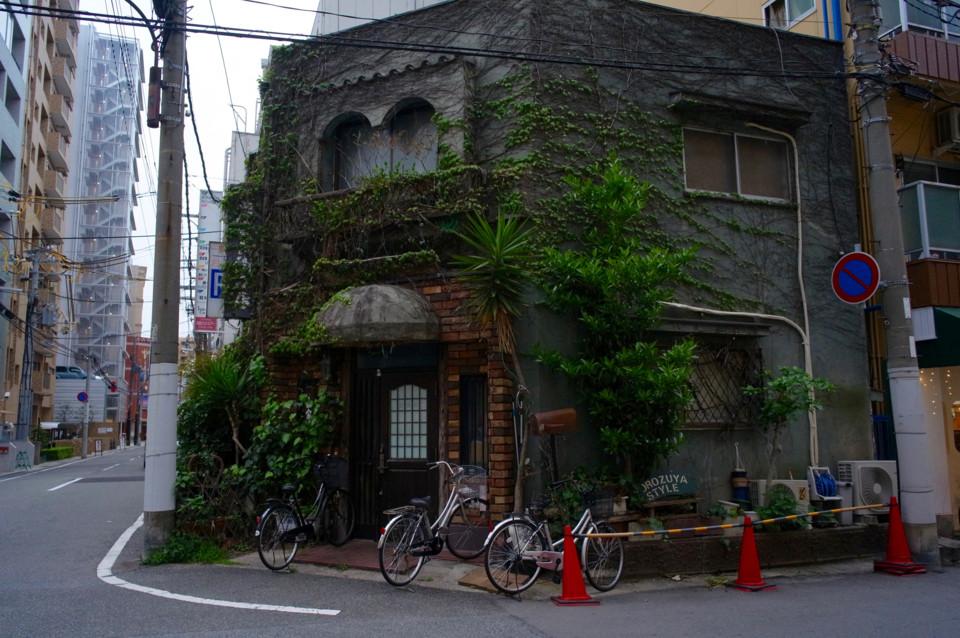 植物に食われた家