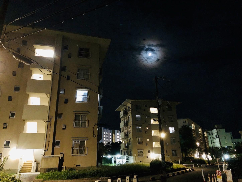 夜の団地(iPhone8 Plus)