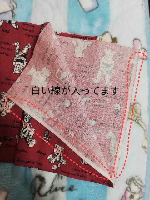 f:id:syaki_syaki:20210209173859j:image