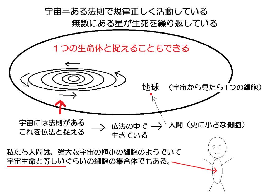 f:id:syakubuku:20171114150343p:plain