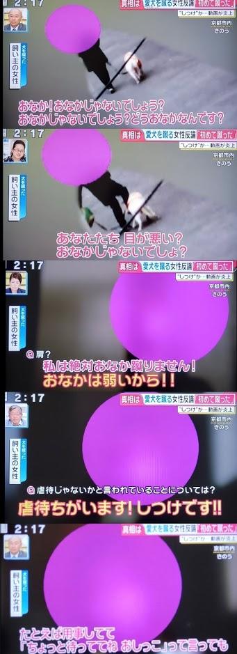 f:id:syamozinohoukago:20190212234457j:plain