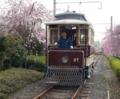 京都新聞写真コンテスト 春うらら