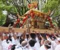 新緑の祭 京都新聞写真コンテスト