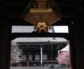 春の門 京都新聞写真コンテスト