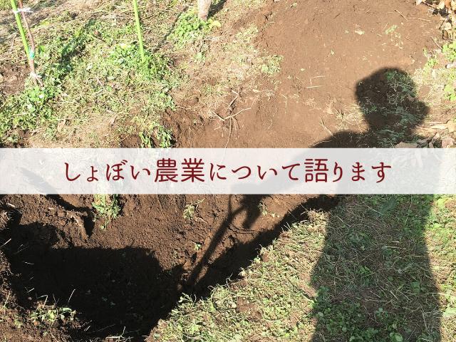 f:id:syoboi-nougyou:20191117215732p:plain