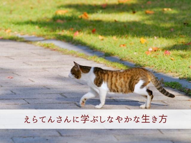 f:id:syoboi-nougyou:20200131085041p:plain