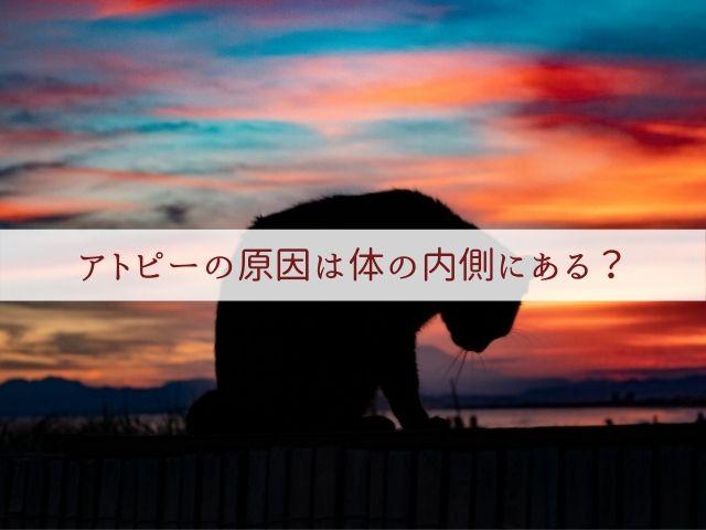 f:id:syoboi-nougyou:20200213133245j:plain