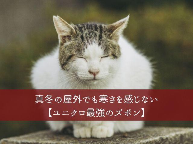 f:id:syoboi-nougyou:20200412112224j:plain