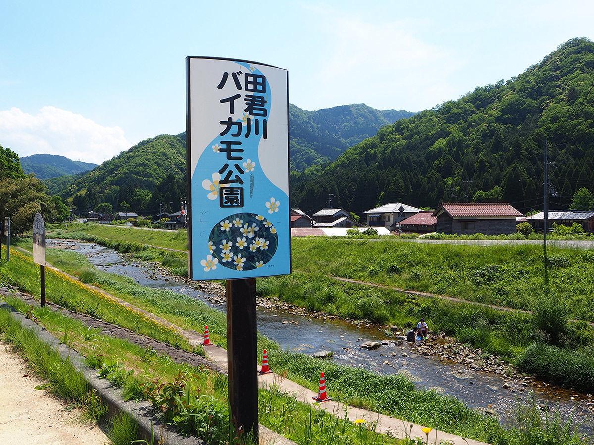 田君川バイカモ公園