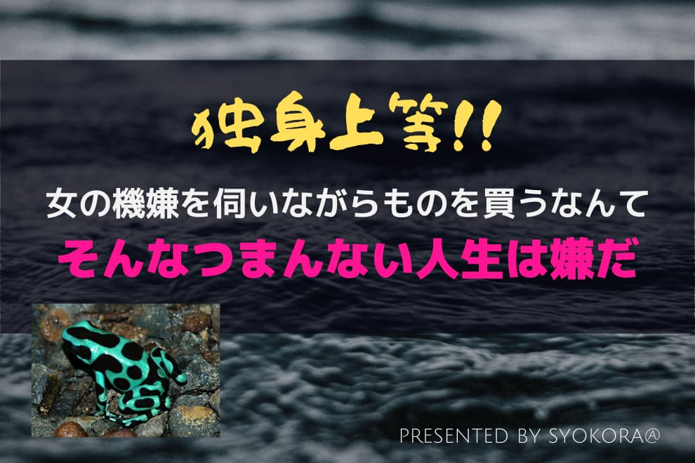 f:id:syokora11:20200217032153j:plain