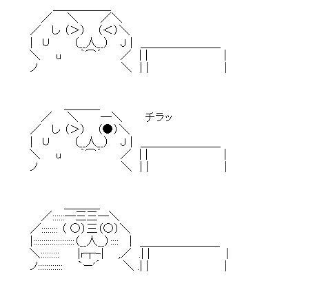 f:id:syokora11:20200314010444j:plain