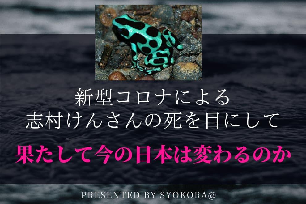 f:id:syokora11:20200331055917j:plain