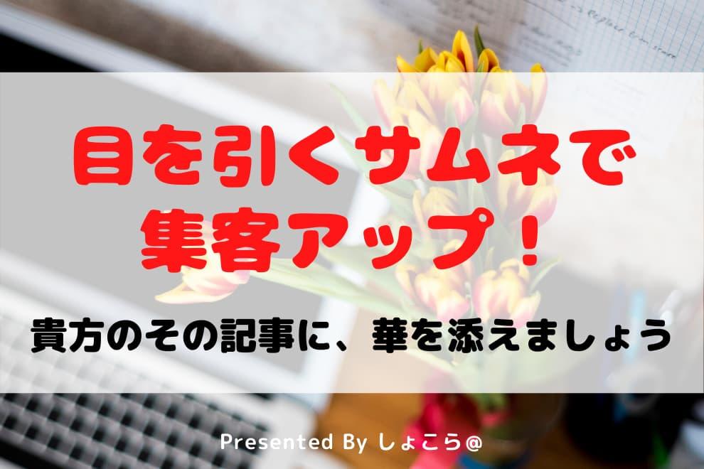 f:id:syokora11:20200407054916j:plain