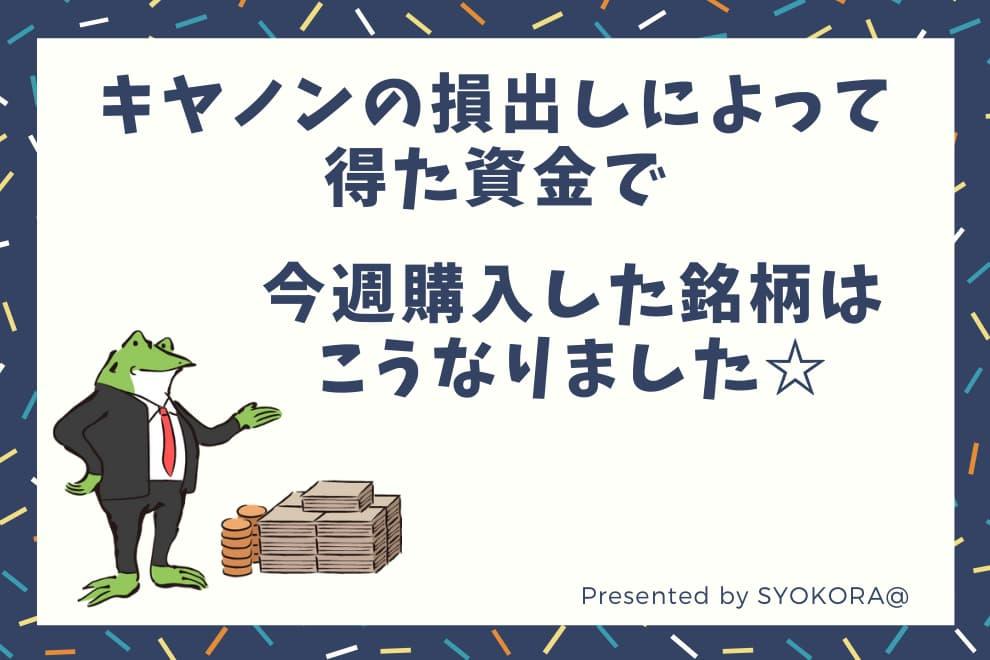 f:id:syokora11:20200430052339j:plain