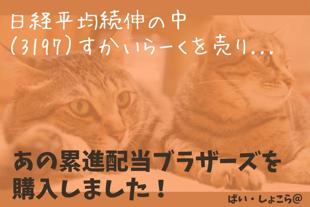 f:id:syokora11:20200527061518j:plain