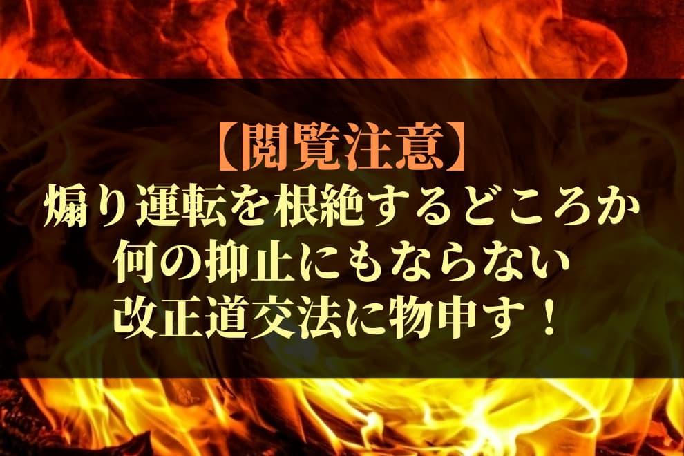 f:id:syokora11:20200610054752j:plain