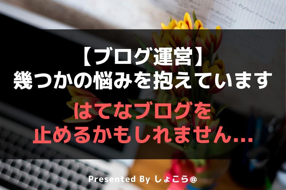 f:id:syokora11:20200613051855j:plain