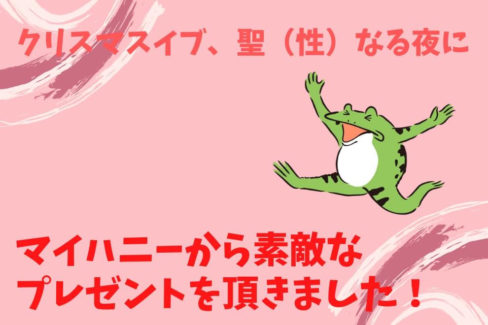f:id:syokora11:20201226031029j:plain
