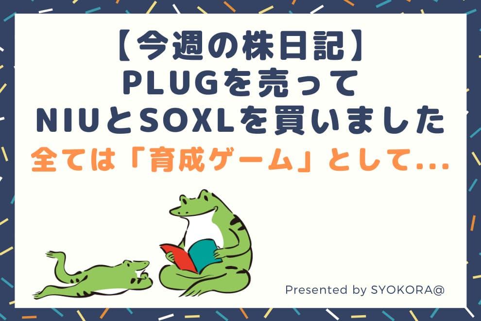 f:id:syokora11:20210116184634j:plain