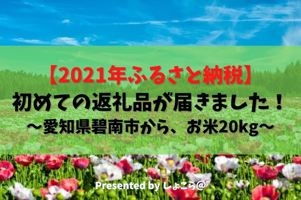 f:id:syokora11:20210305221903j:plain