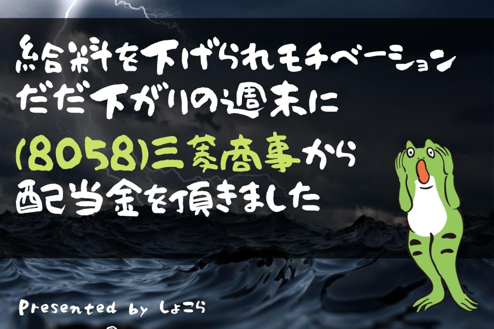 f:id:syokora11:20210625225619j:plain