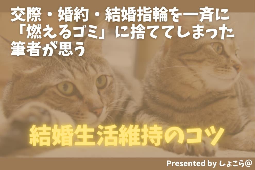 f:id:syokora11:20210809161214j:plain