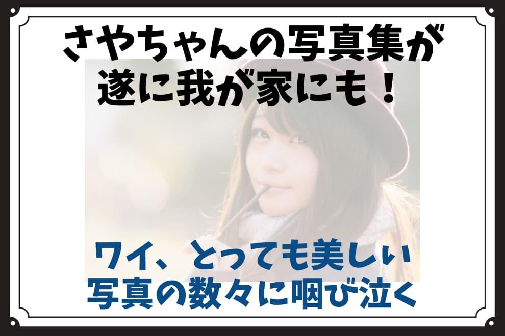 f:id:syokora11:20210908212514j:plain