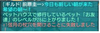 20110701205248