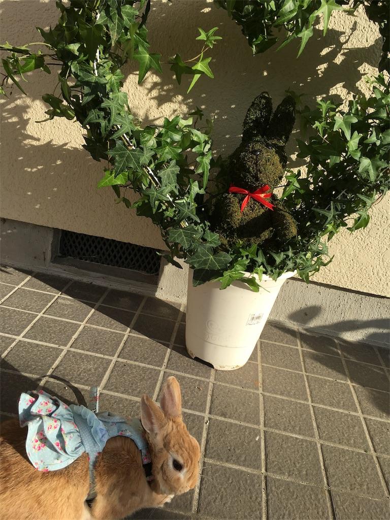 f:id:syokosyoko6276:20161027160710j:image