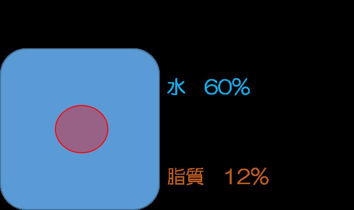 f:id:syokujikaizen:20180912211953p:plain