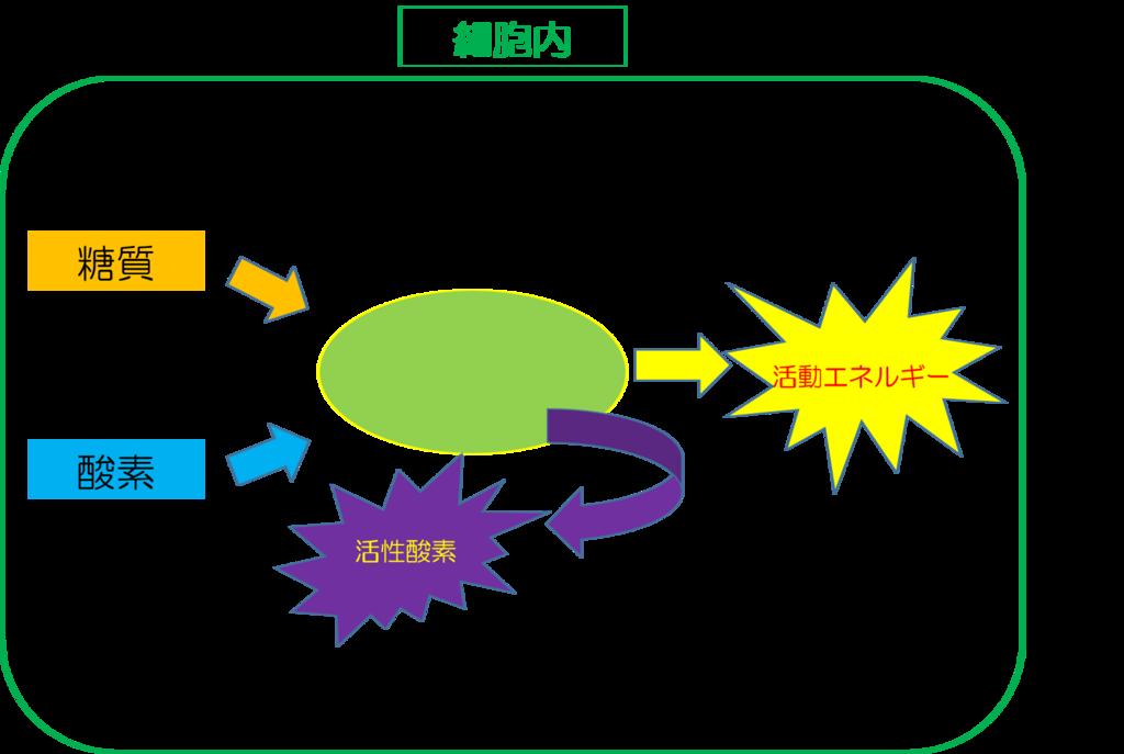 f:id:syokujikaizen:20180922212934p:plain
