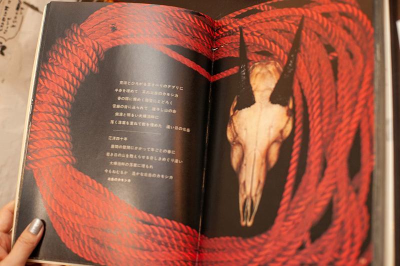 山の意匠―田淵行男写真集2