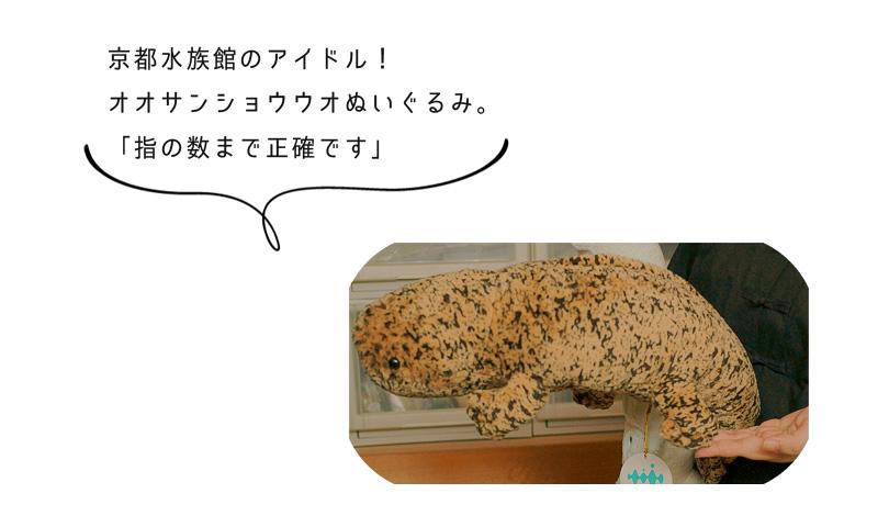 京都水族館のアイドル! オオサンショウウオぬいぐるみ。 「指の数まで正確です」