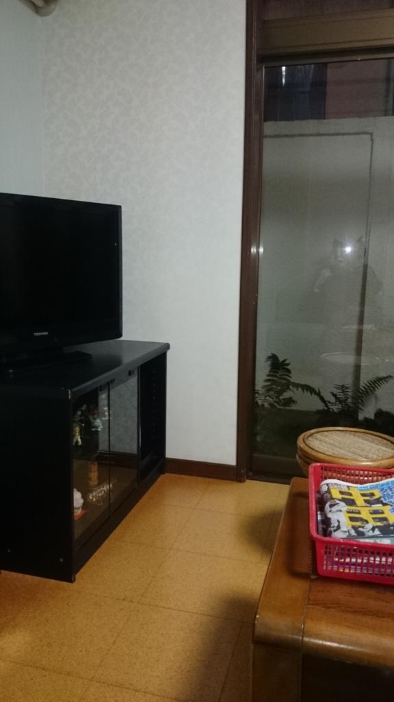 f:id:syoto1988:20170313231420j:plain